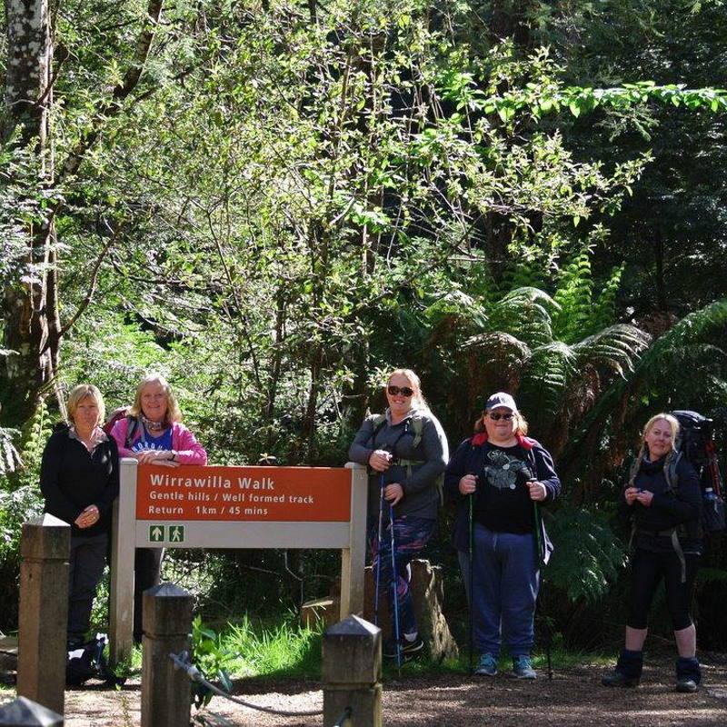 walking group tour on pack saddling australia